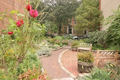 67 Rutland Street Garden