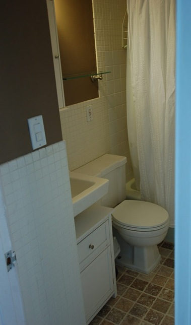 Boston Condo Bathroom